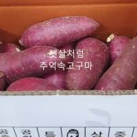 친환경 꿀 [특,긴특 10 kg] 랜덤